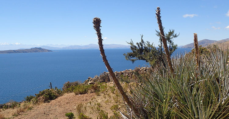 Vue depuis la Isla del Sol
