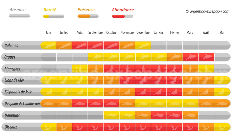 La faune mois par mois sur la péninsule Valdès