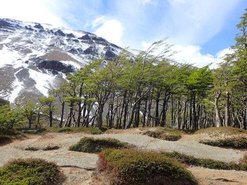 Vent qui souffle à Torres del Paine