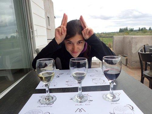 Dégustation de trois vins chez Mevi à Maipu