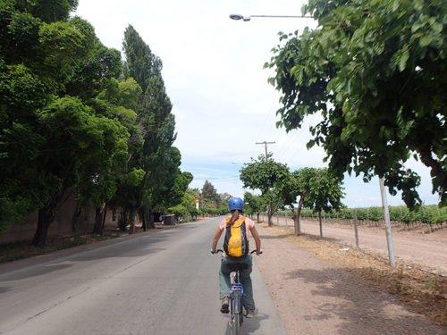 La route des vins à vélo à Mendoza