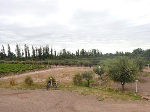 Nos vélos sont garés devant la Bodega Mevi à Maipu