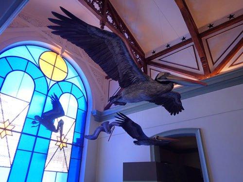 Le musée d'histoire naturelle à Valparaiso