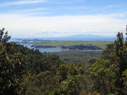 Vue depuis Rangitoto Island