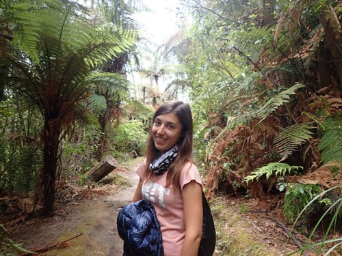 Emilie dans la foret Whakarewarewa