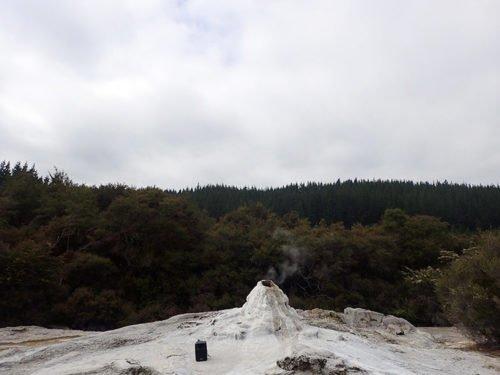 Le geyser Lady Knox au parc de Wai-O-Tapu
