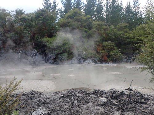 La Mud Pool à Rotorua