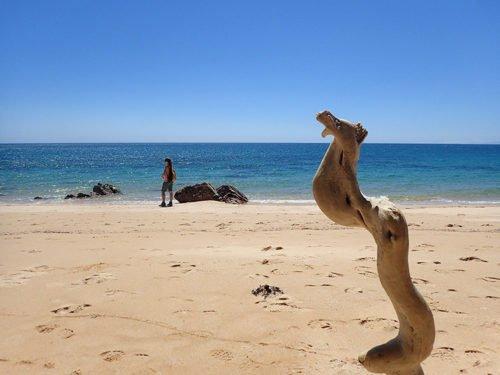 La sublime plage de Goat Bay