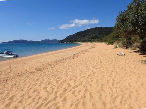 La plage de Totaranui et son joli sable orangé