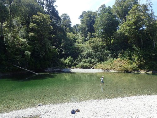 Rivière à l'eau translucide à Totara