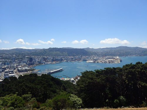 Vue sur Wellington et sa baie depuis le Mont Victoria