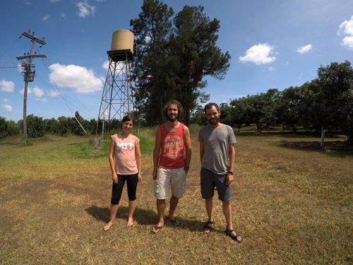 Steve et les Avencurieux dans un verger de manguiers à Atherton