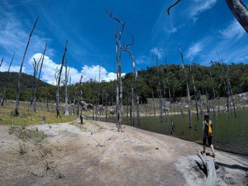 Le Lac Tinaroo sur le plateau d'Atherton