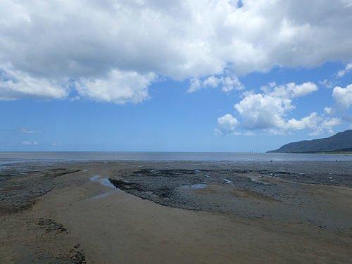 Une plage à Cairns très marécageuse