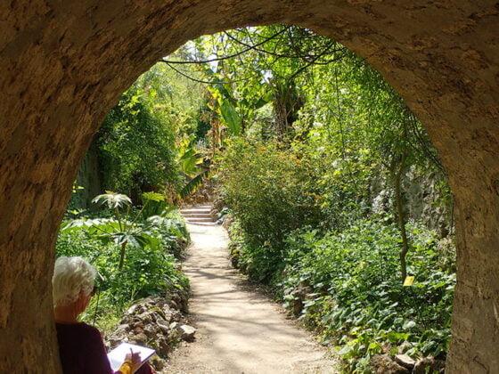 Le jardin des plantes à Montpellier